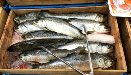 銀鮭を一匹そのまんま、丸焼きにしただけの、ごはん。