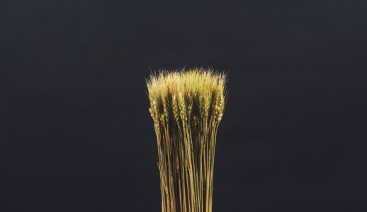 炭水化物を変えたくても、全粒穀物には玄米か麦、蕎麦しかない件。