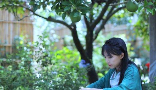 四川省YouTuber「李子柒」が放つ本物の家庭料理に圧倒される