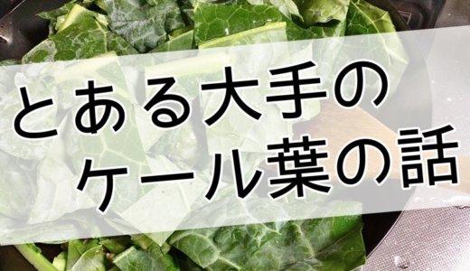 とある加熱&サラダ用ケール生葉を通販で買って食べてみたら・・・