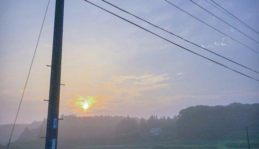 夏の暑苦しさも、めぐりゆく「朝」を思えば落ち着ける。