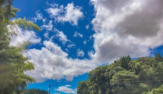 心のうつろいが止まる夏、儚さを見失う夏、日本の夏。