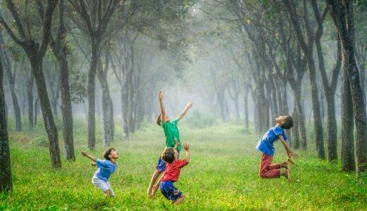 子ども向け青汁の「大麦若葉の隣」にある2つの原材料が気になる。
