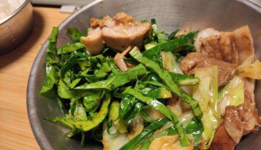 青汁野菜ケールとキャベツ、アブラナ科野菜の競演を楽しむごはん。